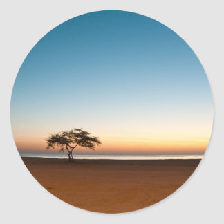 Lonely tree at sunrise in Kuwait Classic Round Sticker