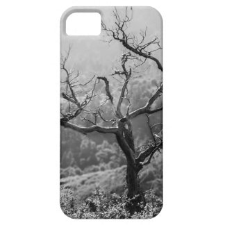 Lonely tree iPhone 5 case