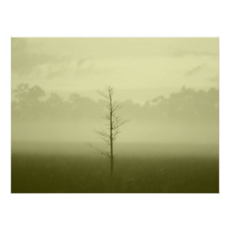 Lonely Tree Posters