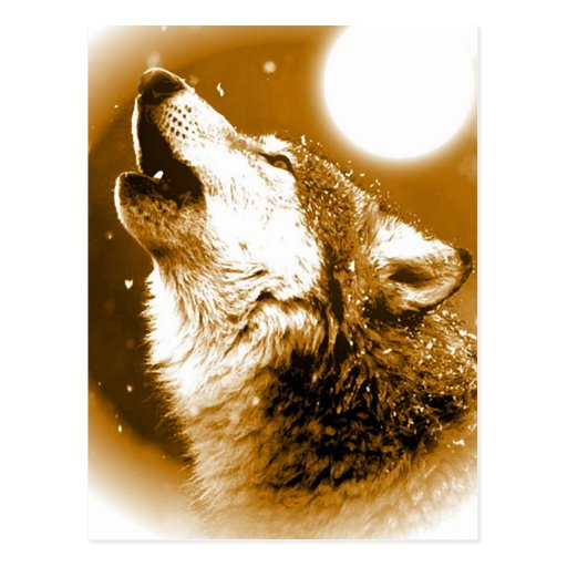 Lonely Wolf Howling at Moon Postcards