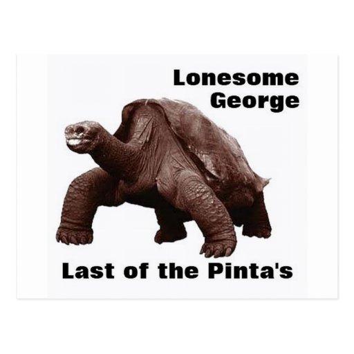 Lonesome George Postcard