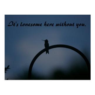 Lonesome Hummingbird postcard