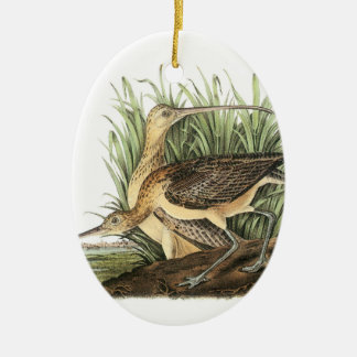 Long-billed Curlew by Audubon Ceramic Oval Decoration