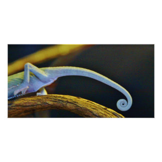 Long Chameleon Tail Personalised Photo Card