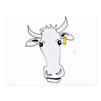 long cow postcard