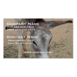 Long Eared Donkey Pack Of Standard Business Cards