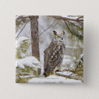 Long eared owl 15 cm square badge