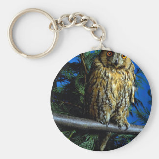 Long-eared owl basic round button key ring