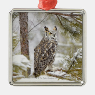 Long eared owl christmas ornament
