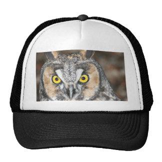 Long-eared Owl Mesh Hat
