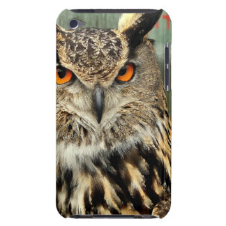 Long Eared Owl iTouch Case Barely There iPod Cover