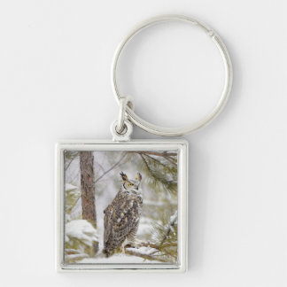 Long eared owl Silver-Colored square key ring