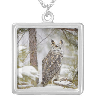 Long eared owl silver plated necklace