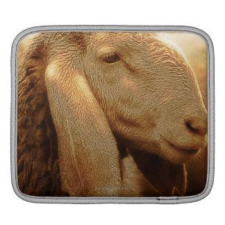 Long Eared Sheep Dolomites, Italy iPad Sleeve