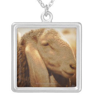 Long Eared Sheep Dolomites, Italy Silver Plated Necklace