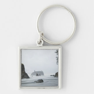 Long exposure of wave motion at Ruby Beach, Key Ring