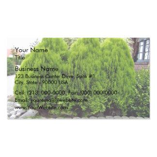 Long Green Grass Field Business Cards