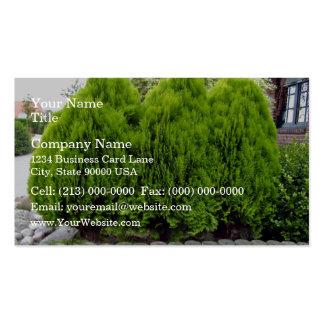 Long Green Grass Field Business Card Templates