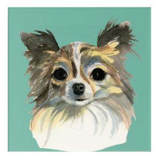 Long Hair Chihuahua Watercolor Portrait Acrylic Print