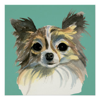 Long Hair Chihuahua Watercolor Portrait Poster