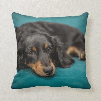 Long-Hair Dachshund Pillow