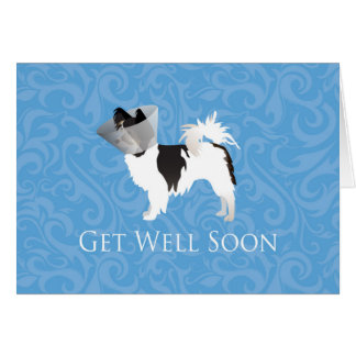 Long-haired Chihuahua Get Well Soon Design Greeting Card