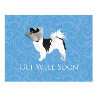 Long-haired Chihuahua Get Well Soon Design Postcard