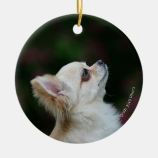 Long Haired Chihuahua Headshot 2 Christmas Ornament