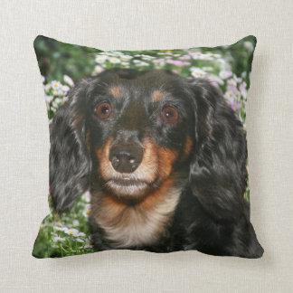 Long haired dachshund cushion
