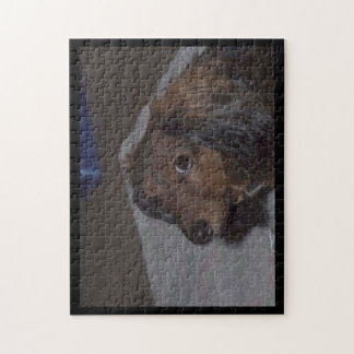 Long-Haired Dachshund Jigsaw Puzzle