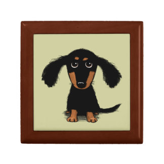 Long Haired Dachshund Puppy Gift Box