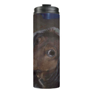 Long-Haired Dachshund Thermal Tumbler