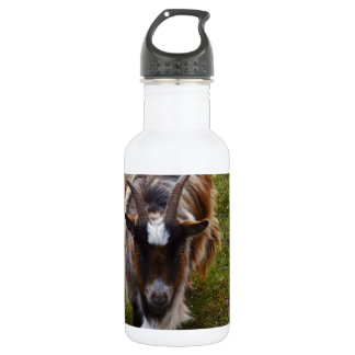 Long Haired Goat. 532 Ml Water Bottle