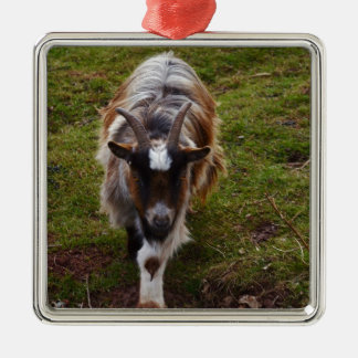 Long Haired Goat. Silver-Colored Square Decoration