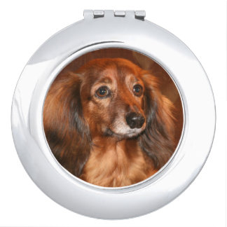 Long haired red Dachshund Travel Mirror