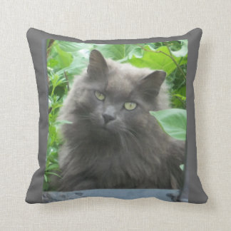 Long Haired Russian Blue Cat Cushion