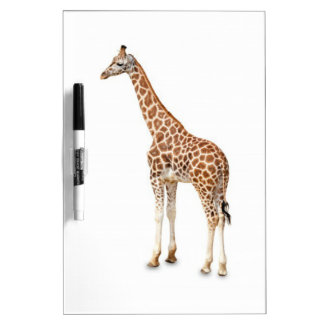 Long Neck Giraffe Dry Erase Board