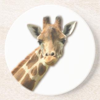Long Necked Giraffe  Coaster