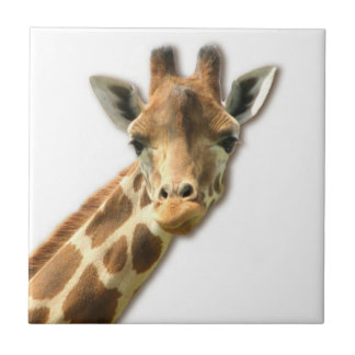Long Necked Giraffe  Tile
