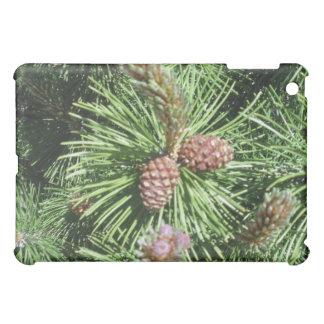 Long Needled Pine iPad Case