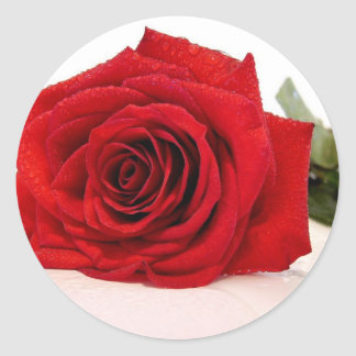 Long Stem Red Rose Stickers
