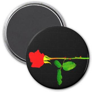 Long Stemmed Red Rose Fridge Magnet