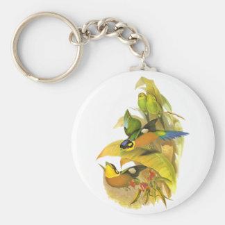 Long-tailed Broadbill Key Ring