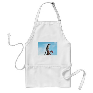 Long-tailed fiscal shrike adult apron