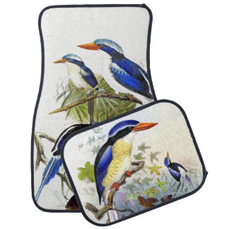 Long Tailed Kingfisher Birds Animal Car Floor Mats