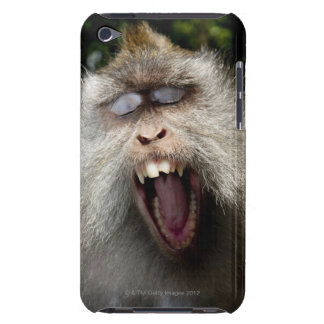 Long-tailed macaques (Macaca fascicularis) iPod Case-Mate Case