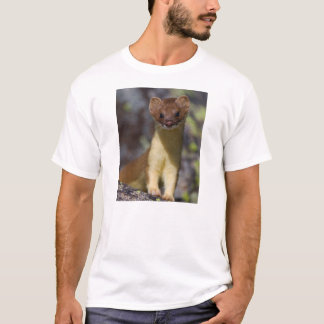 Long-tailed Weasel T-Shirt