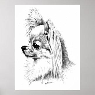 Longcoat Chihuahua Champion Print