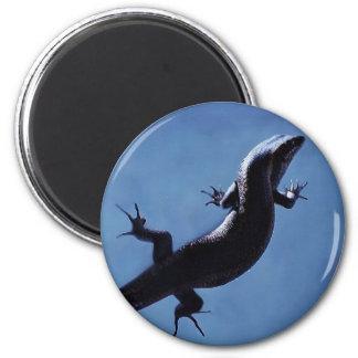 Longevity 6 Cm Round Magnet
