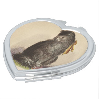 Longhaired Black Cat Compact Mirrors